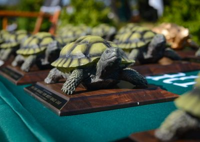 turtle-invitational-2019-gallery-101