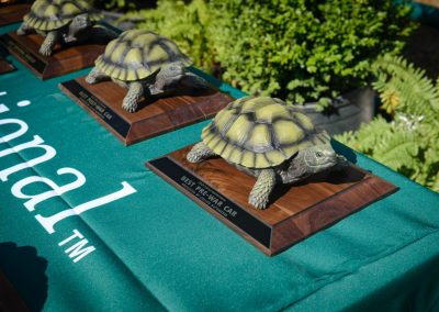 turtle-invitational-2019-gallery-102